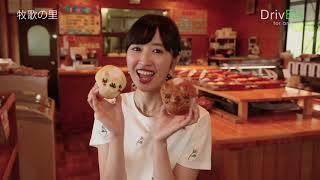 DrivE41 -for one-「ひるがの高原 牧歌の里」(2018.6.22放送)