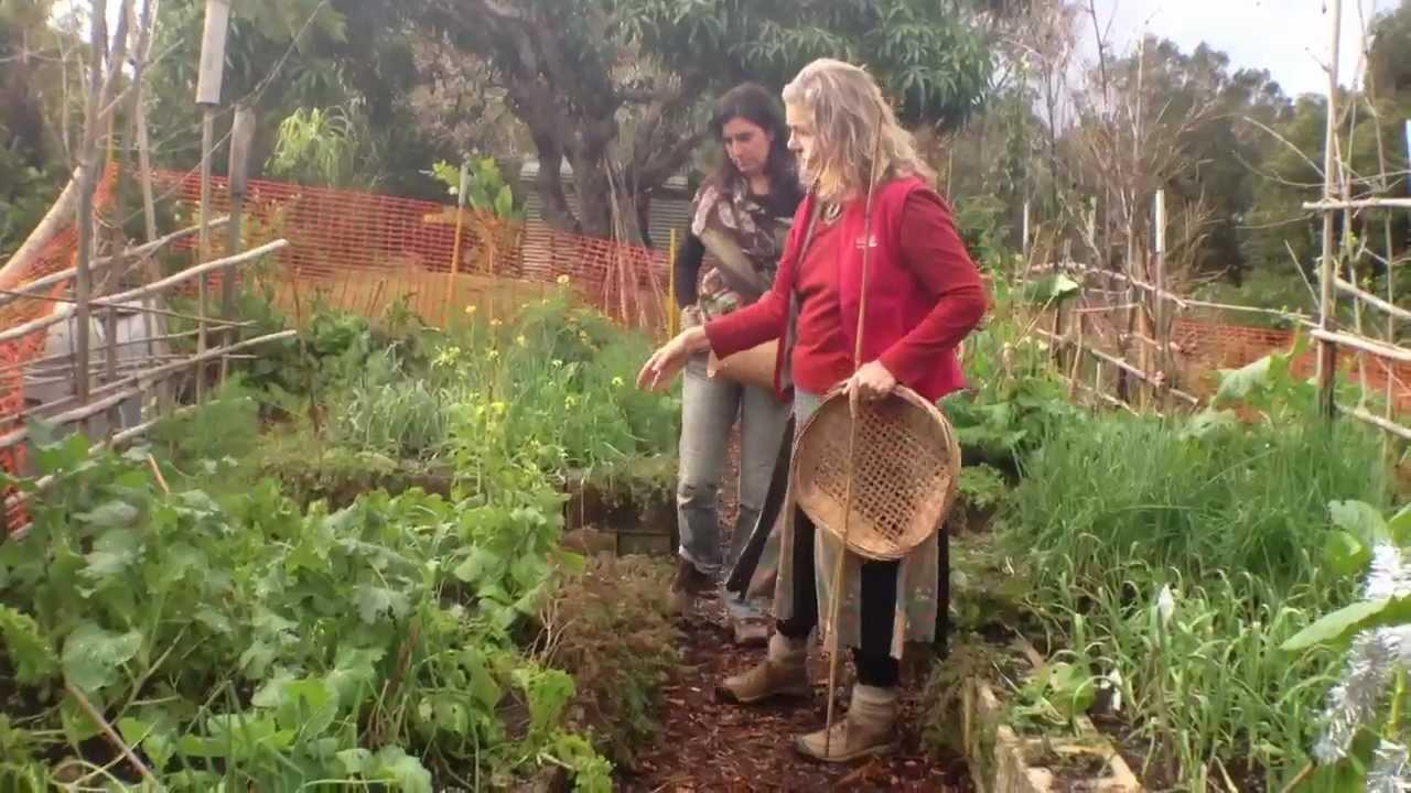 Principios de la permacultura en el jardin youtube for El jardin de luz ibiza