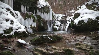 A Mecsek legszebb tájain 1.rész: Az Óbányai-völgy magyar amatőr természetfilm( Full HD )
