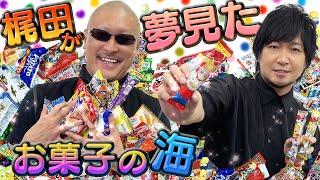 【駄菓子】大人買いした大人によるキャッキャウフフな宝探し【開封動画】