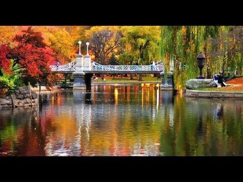 public garden tour - boston ma