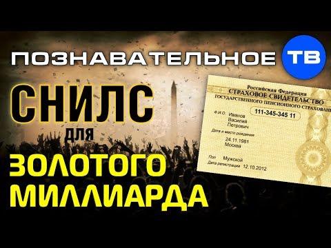 СНИЛС для золотого миллиарда (Познавательное ТВ, Артём Войтенков)