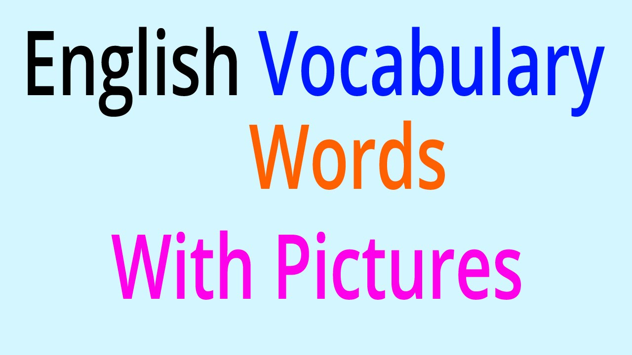 English Vocabulary Words   Learn English Vocabulary With Pictures   YouTube