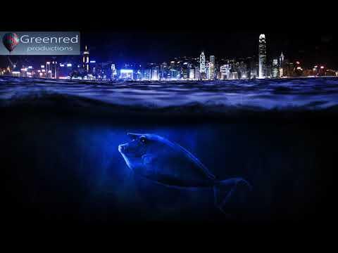 Deep Sleep Music - 8 Hours Long Sleeping Music with Binaural Beats Delta Waves, Insomnia Music