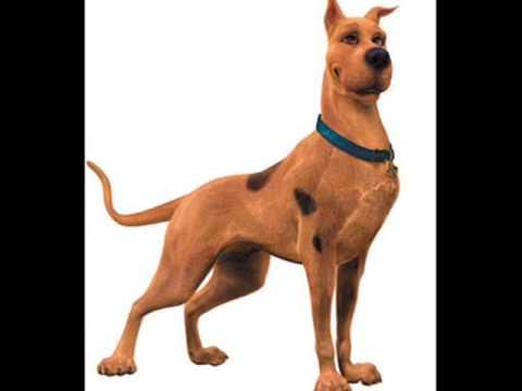 Melô de Scooby Doo