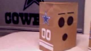 Dallas Cowboy  Fan Mask