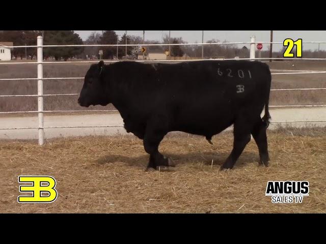 Benoit Angus Lot 21