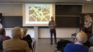 Danish IAS LECTURE by Donald E. Canfield