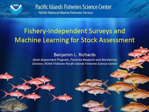 Fishery-Independent Surveys And Machine Learning For Stock Assessment