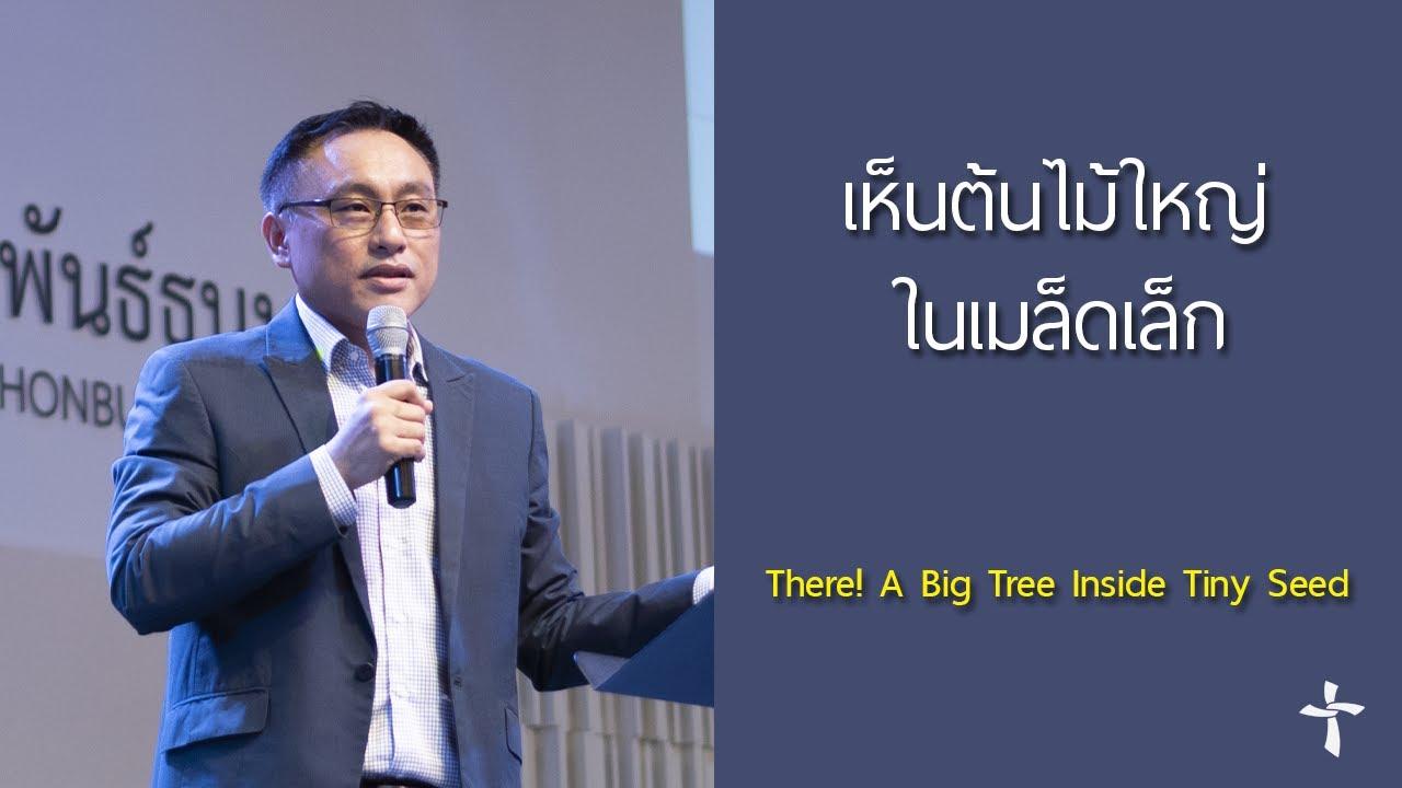 คำเทศนา เห็นต้นไม้ใหญ่ในเมล็ดเล็ก (กิจการฯ 9:26-31)
