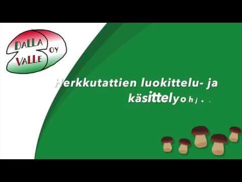 Herkkutattien luokittelu: I-, II- ja III-luokka (Dalla Valle Oy)