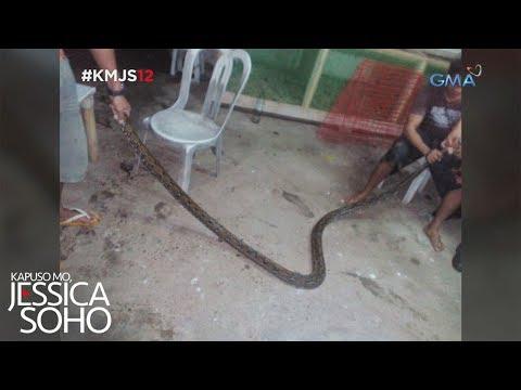Kapuso Mo, Jessica Soho: Misteryo sa Roxas