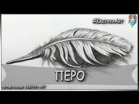 Как нарисовать ПЕРО карандашом поэтапно