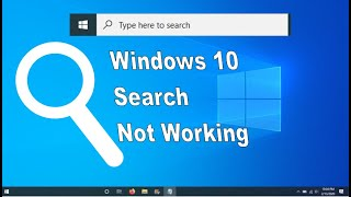 Windows 10 Search bar not working