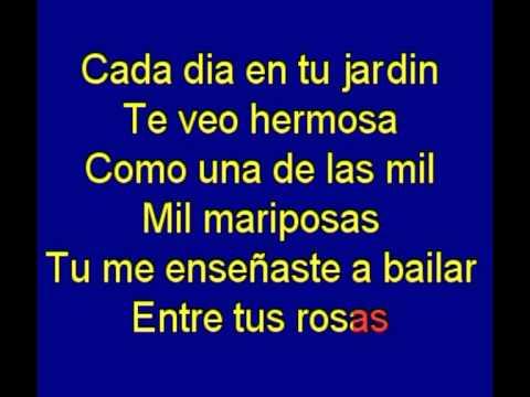 El Vals De Las Mariposas -  Dany Daniel -  Karaoke   Tony Ginzo