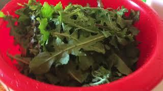 Греческая кухня/ХОРТА/Салат из листьев цикория