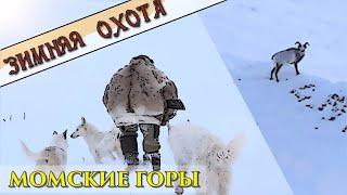 Зимняя охота в горах Момы