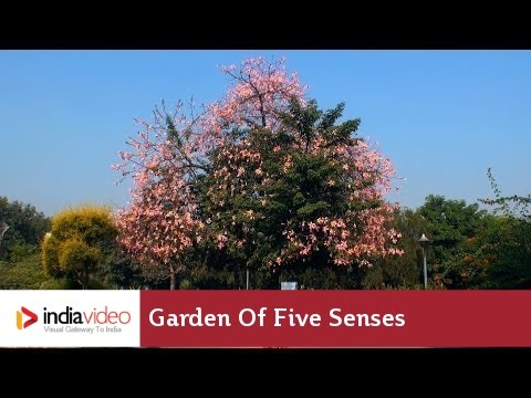 Delhi's Garden of Five Senses thrills and inspires