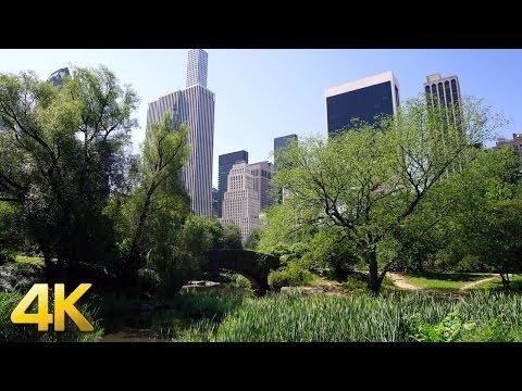 NYC Central Park in 4K