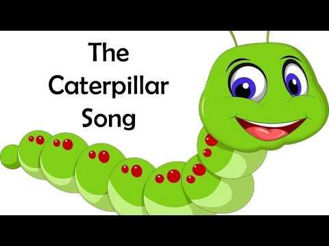 The Caterpillar Song - Dr. Jean
