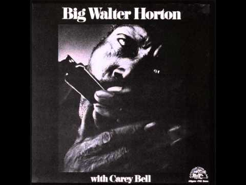 Big Walter Horton With Carey Bell - Under The Sun