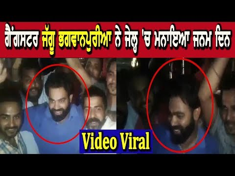 Gangster Jagu Bhagwanpuri Celebrate His Birthday In Jail - Video Viral  