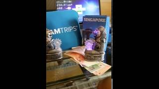 Gifts Dreamtrip Merlion