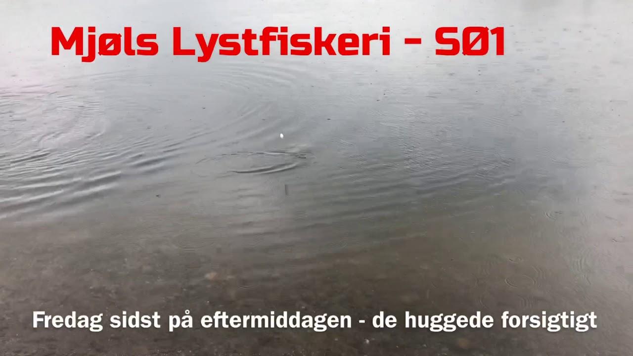 Mjøls Lystfiskeri - SØ1 - fredag eftermiddag