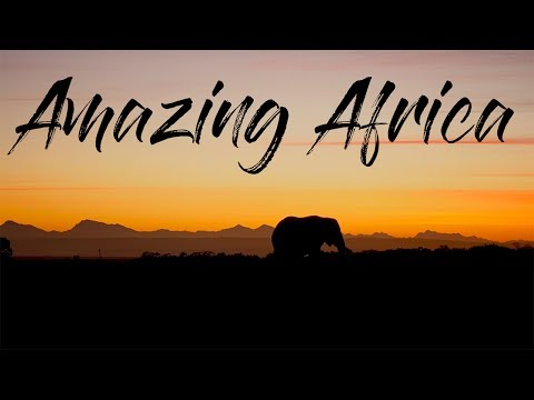 Epic Trip to Africa | South Africa / Tansania | Magic Moments