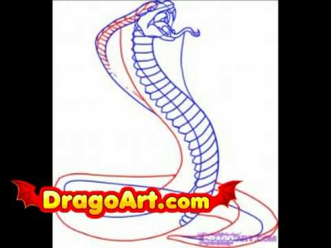 How To Draw A Snake King Cobra