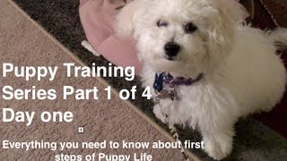 Puppy-Training-Series-Part-1-of-4-Best-Crate-Training-Video-on-first-day-with-Puppy