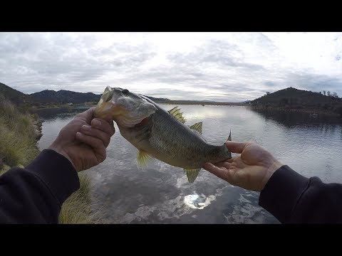 BASS Fishing Dixon Lake (San Diego)