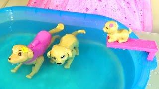 Кукла Барби и ЩЕНОЧЕК!!! Бассейн для собак Барби Barbie doll Puppy Chase dog play set
