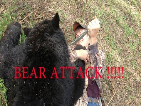 Black bear hunting Alberta Canada with Boss Outfittitng