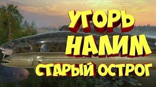 Русская рыбалка 4 УГОРЬ НАЛИМ Старый Острог рр4 Алексей Майоров