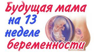 Будущая мама на 13 неделе беременности!