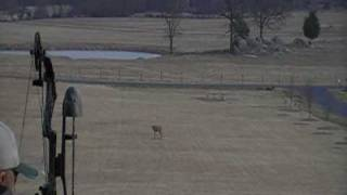 100 yard archery shot with a String Sight