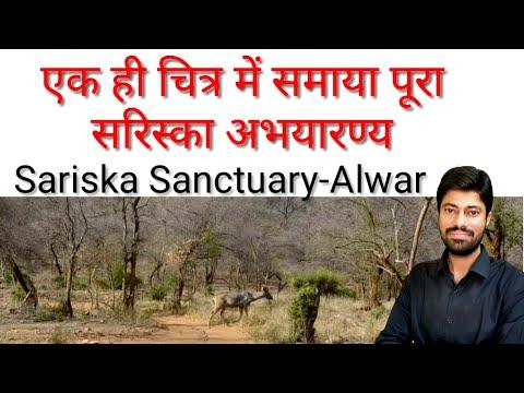 एक ही चित्र में समाया पूरा सरिस्का अभयारण्य - अलवर, Sarika Sanctuary-Alwar, Geography Of Rajasthan
