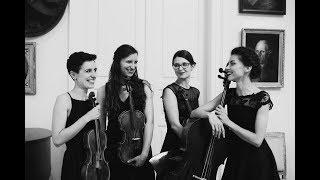 Haydn - String quartet op. 20 no. 4: I. Allegro di molto   QUARTETTO NERO