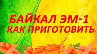Байкал Эм 1  Как приготовить раствор Байкал ЭМ1