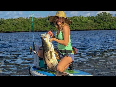 My WILDEST Paddle Board Catches | How I Got Started SUP Fishing