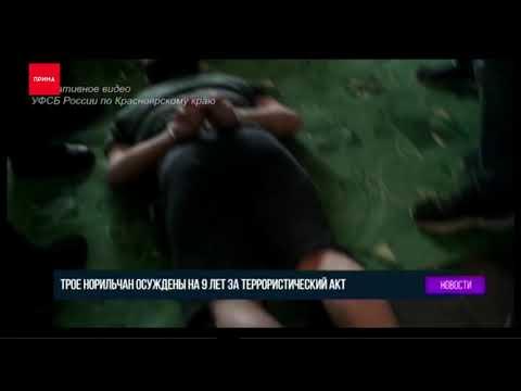 В Норильске задержаны террористы из запрещённой в России организации ИГИЛ