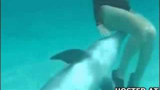 Dolphin Loves The Smell Of Pussy