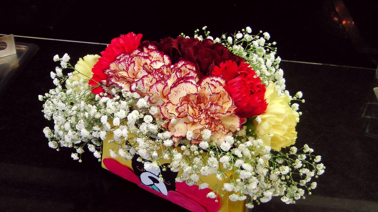 Arreglo floral de claveles naturales en un estuche - Arreglos florales con flores artificiales ...