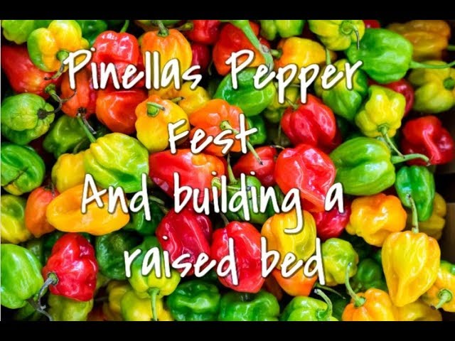 Check out Pinellas Pepper Fest