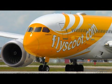 Which Boeing 787 Livery Looks The BEST? | Melbourne Airport Plane Spotting