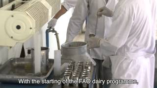 River of milk -- Afghan dairy farmers prosper