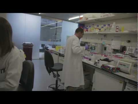 The UCL Cancer Institute Research Trust