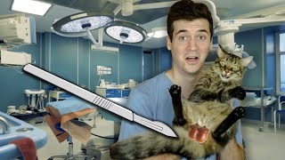 Neutering My Cat! **SURGICAL**