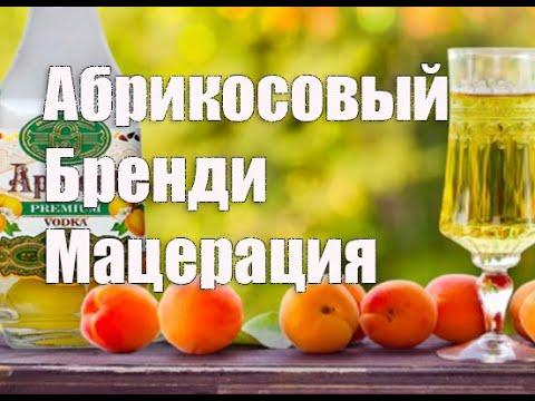 Абрикосовый мацерат   Абрикосовый бренди в домашних условиях  Видео 18+